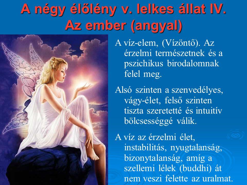 A négy élőlény v. lelkes állat IV. Az ember (angyal)