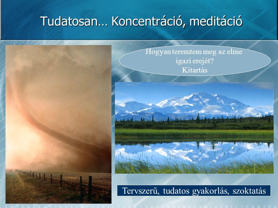 Tudatosan… Koncentráció, meditáció