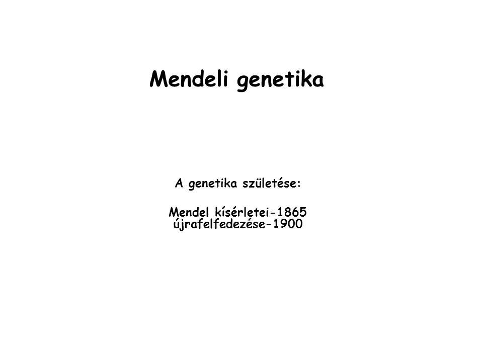 A genetika születése: Mendel kísérletei-1865 újrafelfedezése-1900