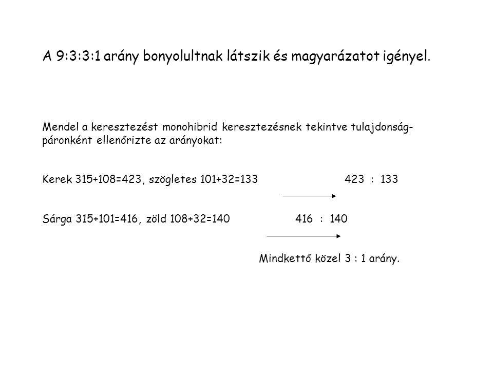 A 9:3:3:1 arány bonyolultnak látszik és magyarázatot igényel.