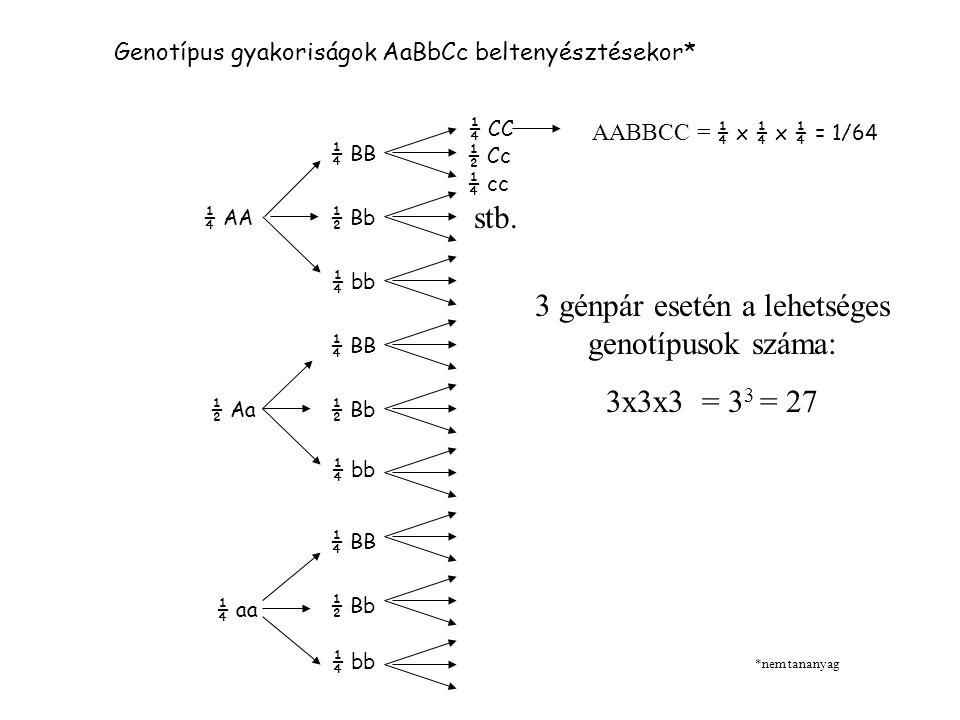 3 génpár esetén a lehetséges genotípusok száma: