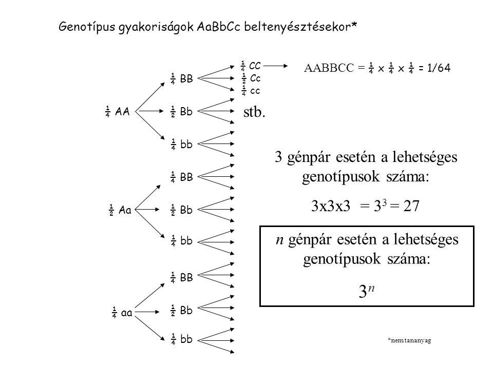 3n stb. 3 génpár esetén a lehetséges genotípusok száma:
