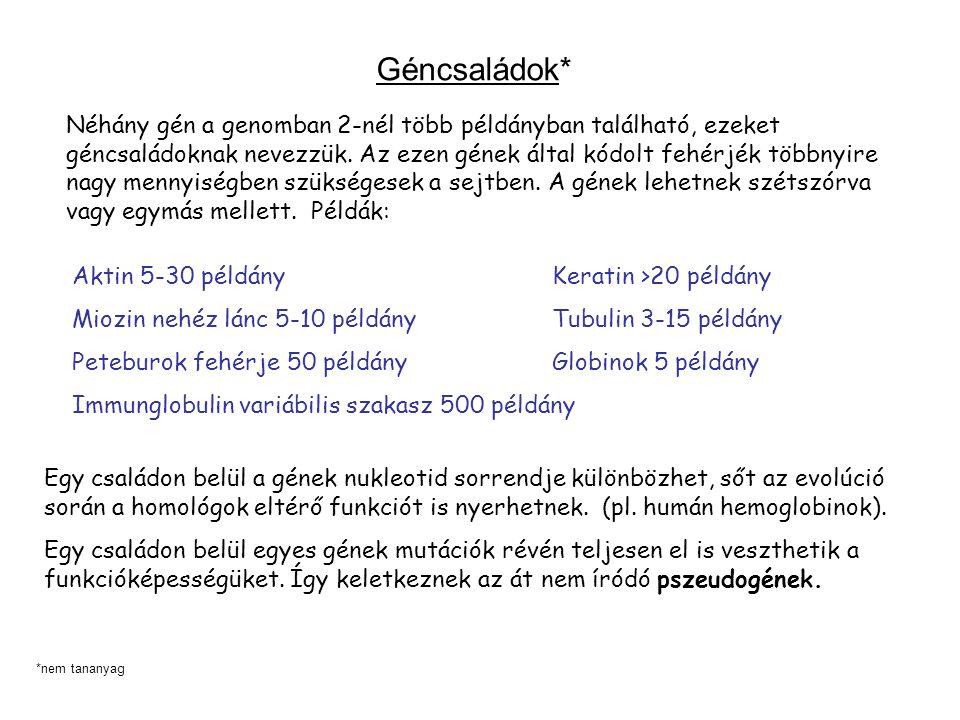 Géncsaládok*