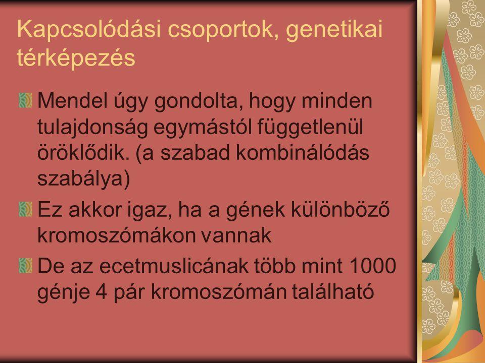 Kapcsolódási csoportok, genetikai térképezés
