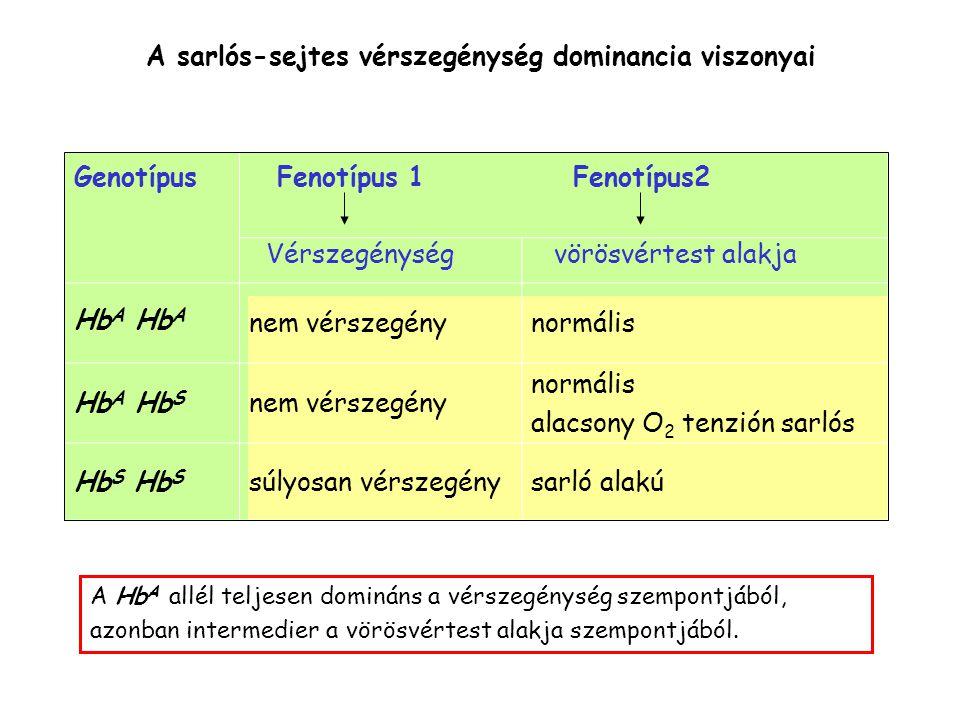 A sarlós-sejtes vérszegénység dominancia viszonyai