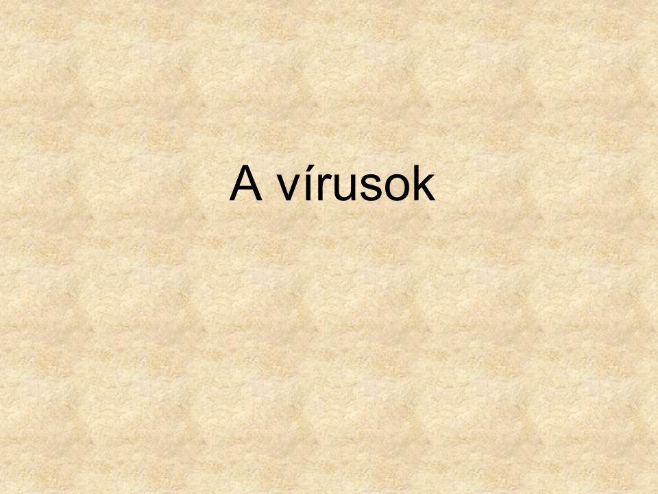 A vírusok