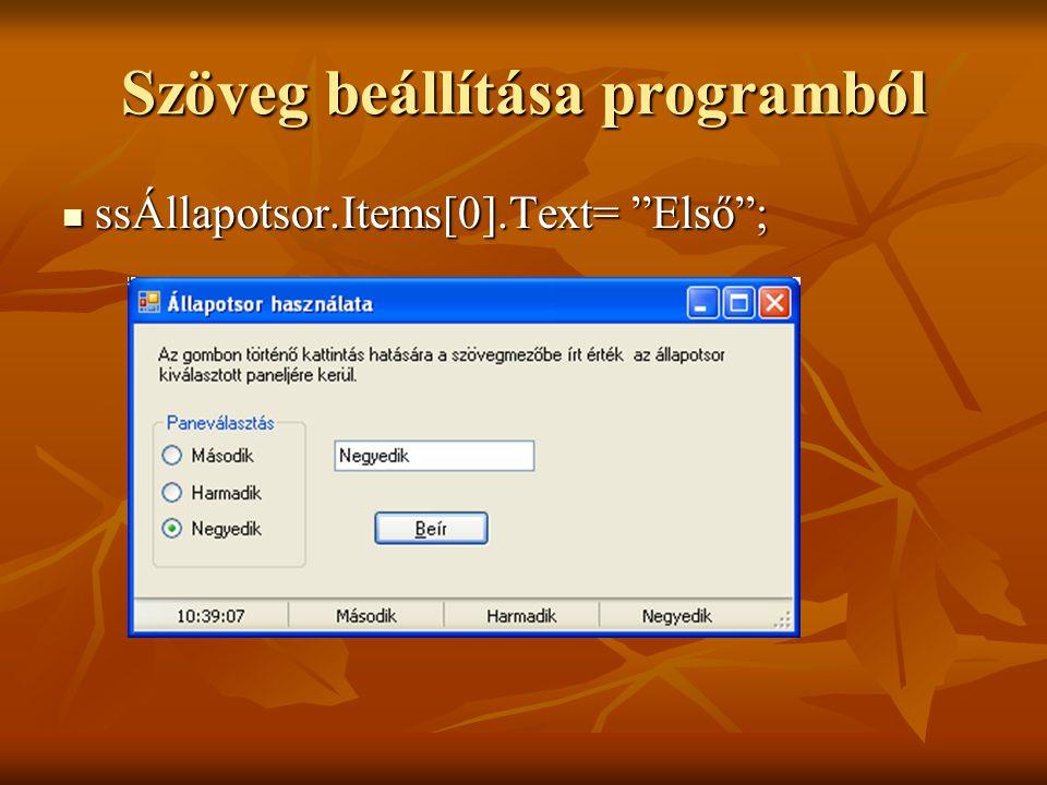 Szöveg beállítása programból