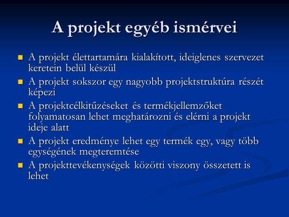 A projekt egyéb ismérvei