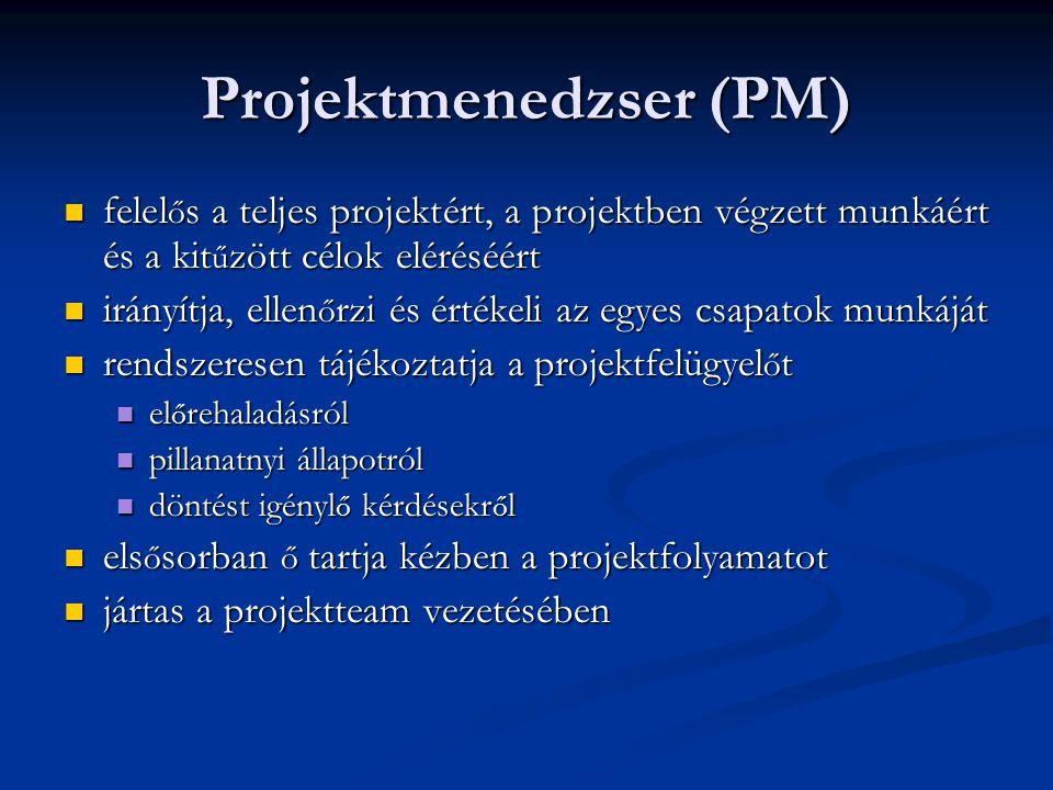 Projektmenedzser (PM)