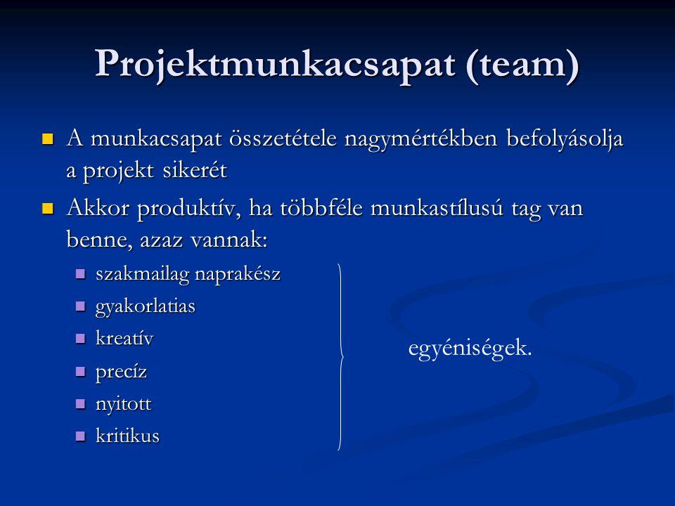 Projektmunkacsapat (team)