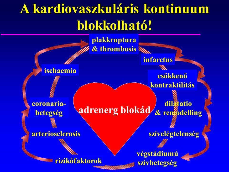 A kardiovaszkuláris kontinuum blokkolható!