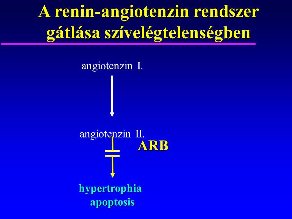 A renin-angiotenzin rendszer gátlása szívelégtelenségben