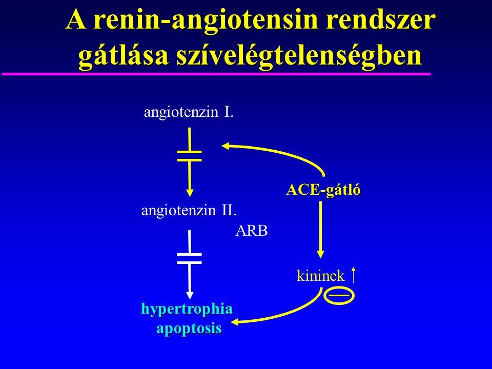 A renin-angiotensin rendszer gátlása szívelégtelenségben