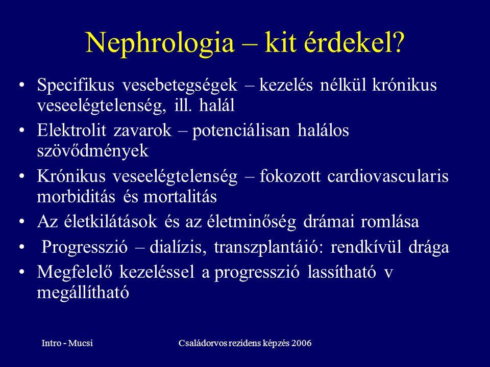 Nephrologia – kit érdekel