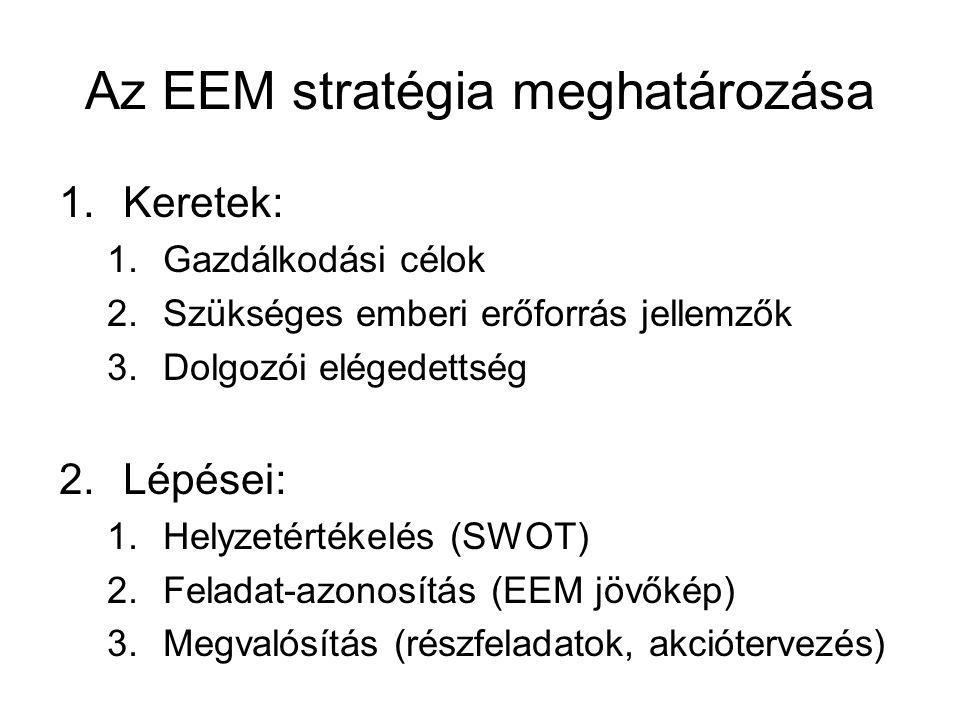 Az EEM stratégia meghatározása