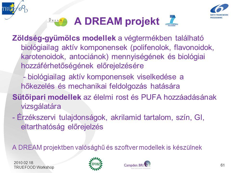 A DREAM projekt