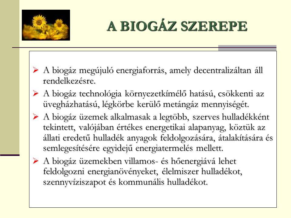 A BIOGÁZ SZEREPE A biogáz megújuló energiaforrás, amely decentralizáltan áll rendelkezésre.