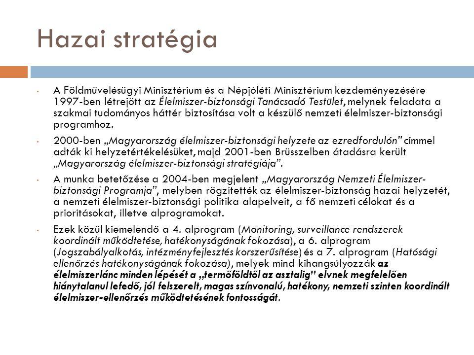 Hazai stratégia