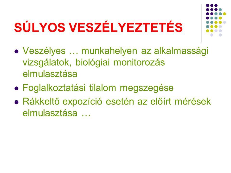 SÚLYOS VESZÉLYEZTETÉS