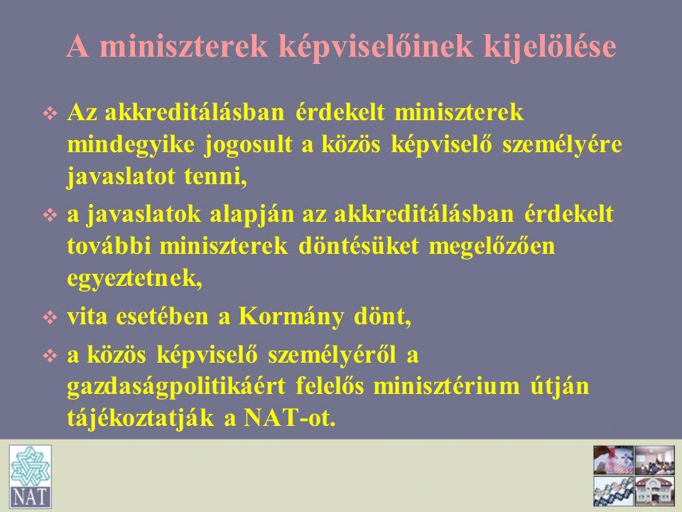 A miniszterek képviselőinek kijelölése