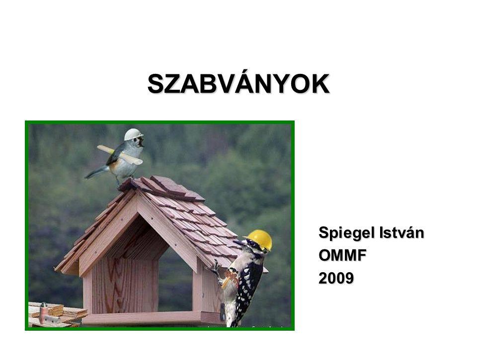 SZABVÁNYOK Spiegel István OMMF 2009