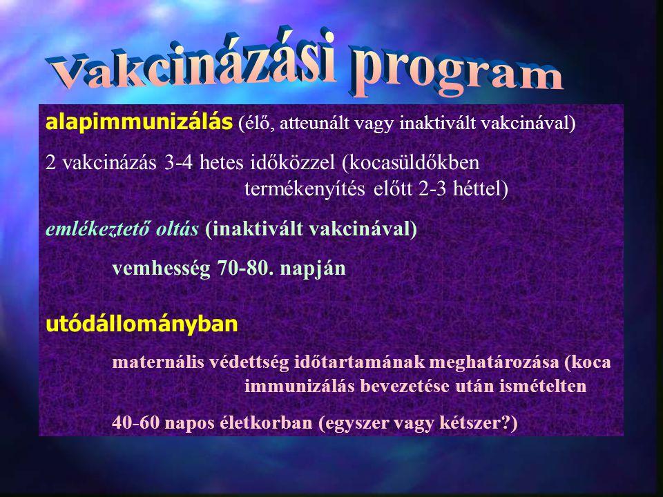 Vakcinázási program alapimmunizálás (élő, atteunált vagy inaktivált vakcinával)