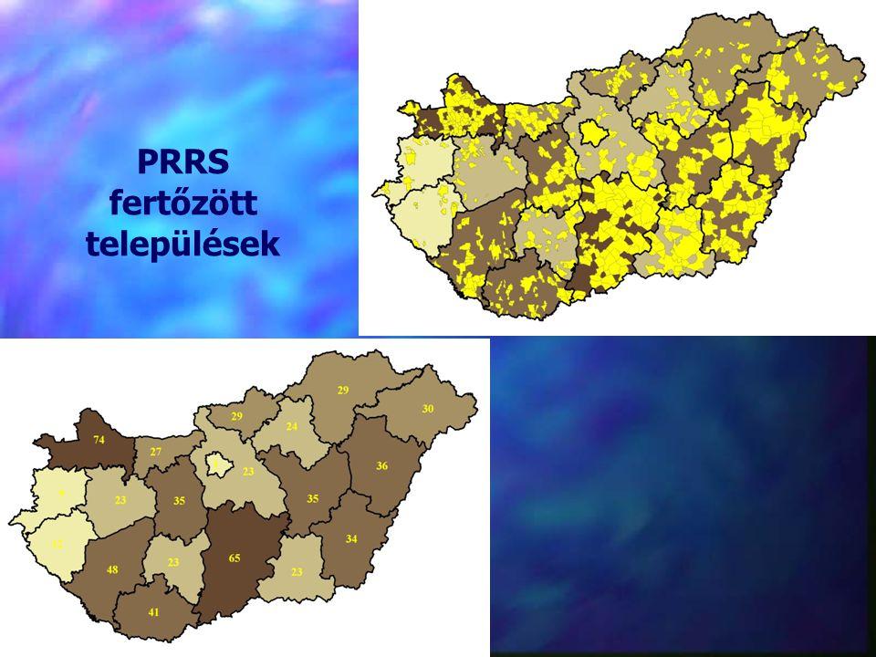 PRRS fertőzött települések