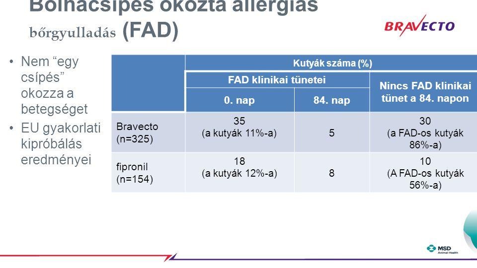 Bolhacsípés okozta allergiás bőrgyulladás (FAD)