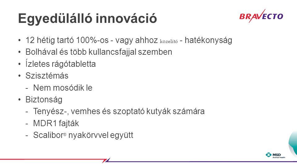 Egyedülálló innováció