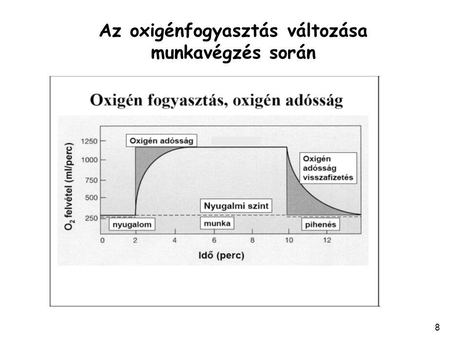 Az oxigénfogyasztás változása