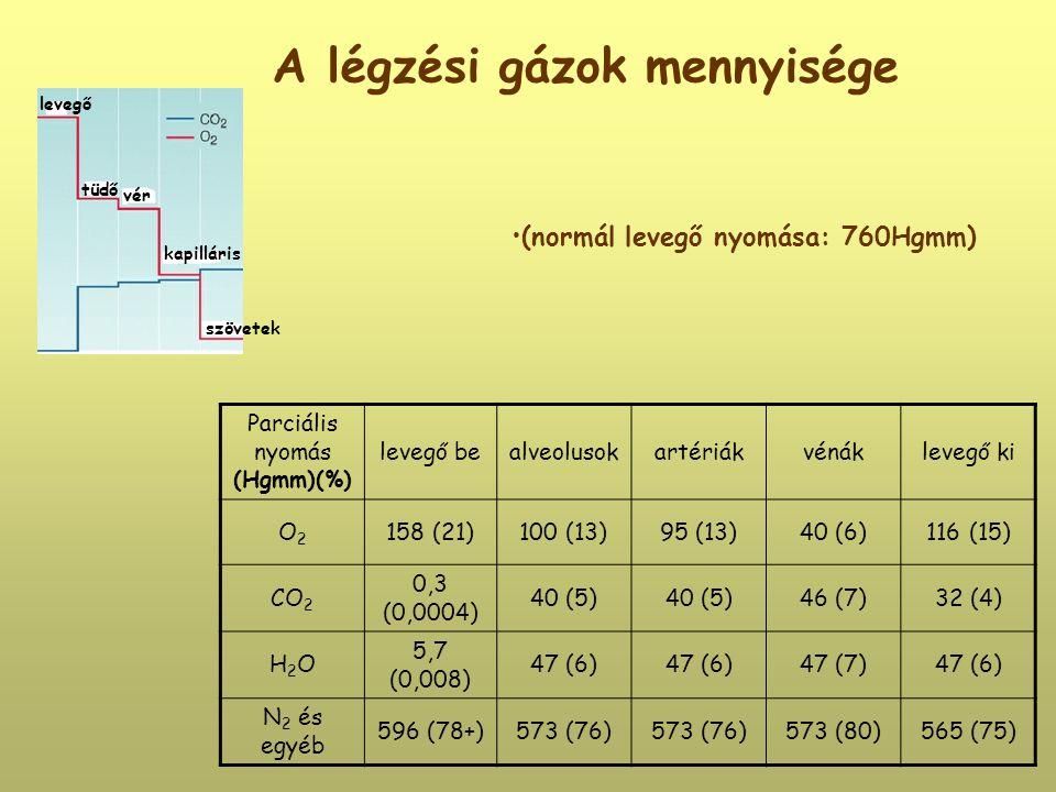 A légzési gázok mennyisége