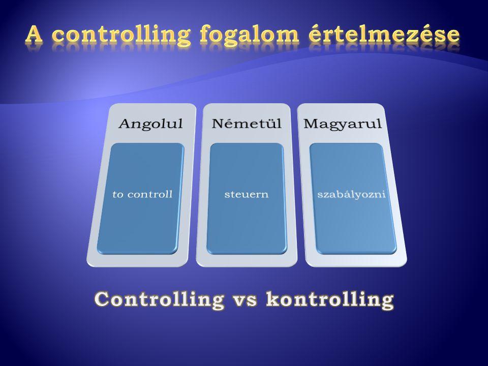 A controlling fogalom értelmezése