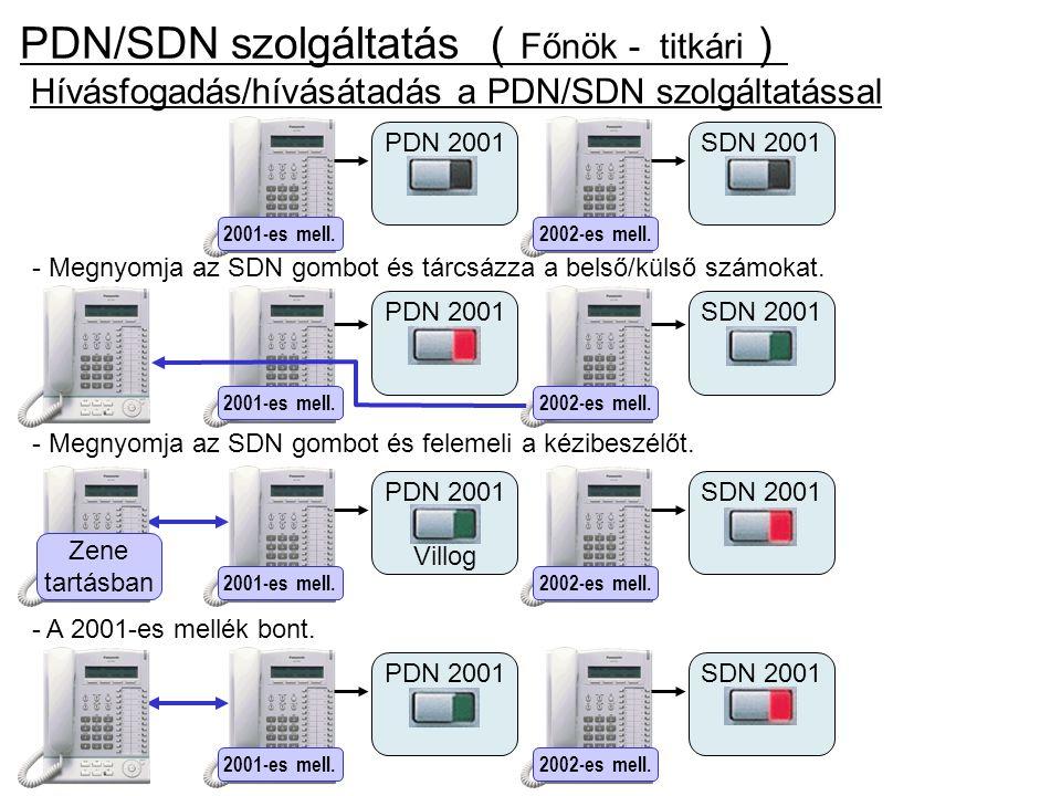 PDN/SDN szolgáltatás (Főnök - titkári)