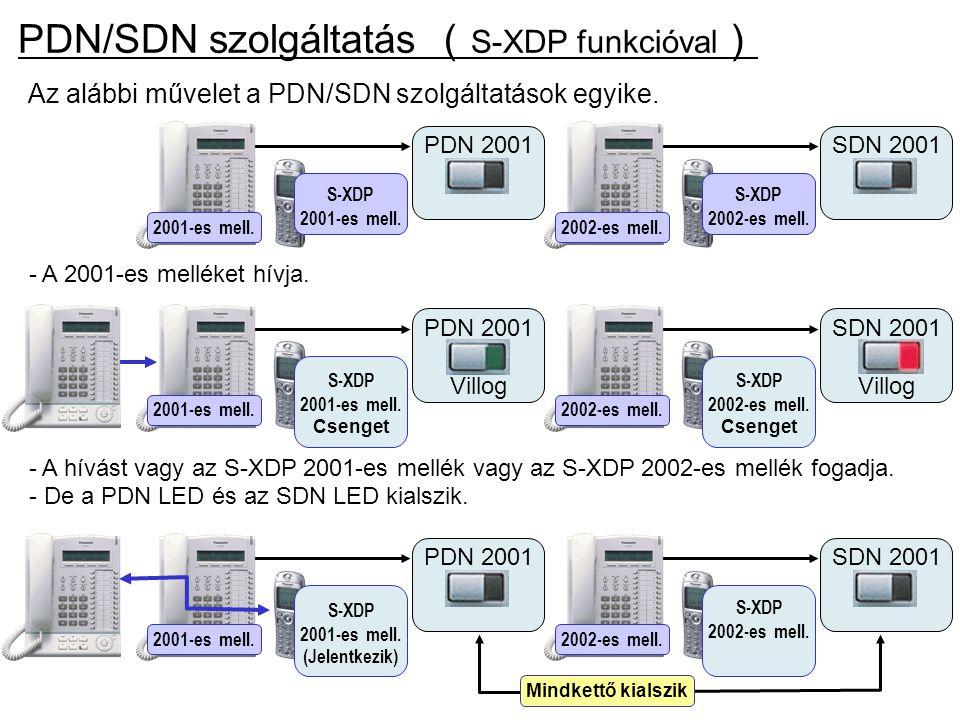PDN/SDN szolgáltatás (S-XDP funkcióval)