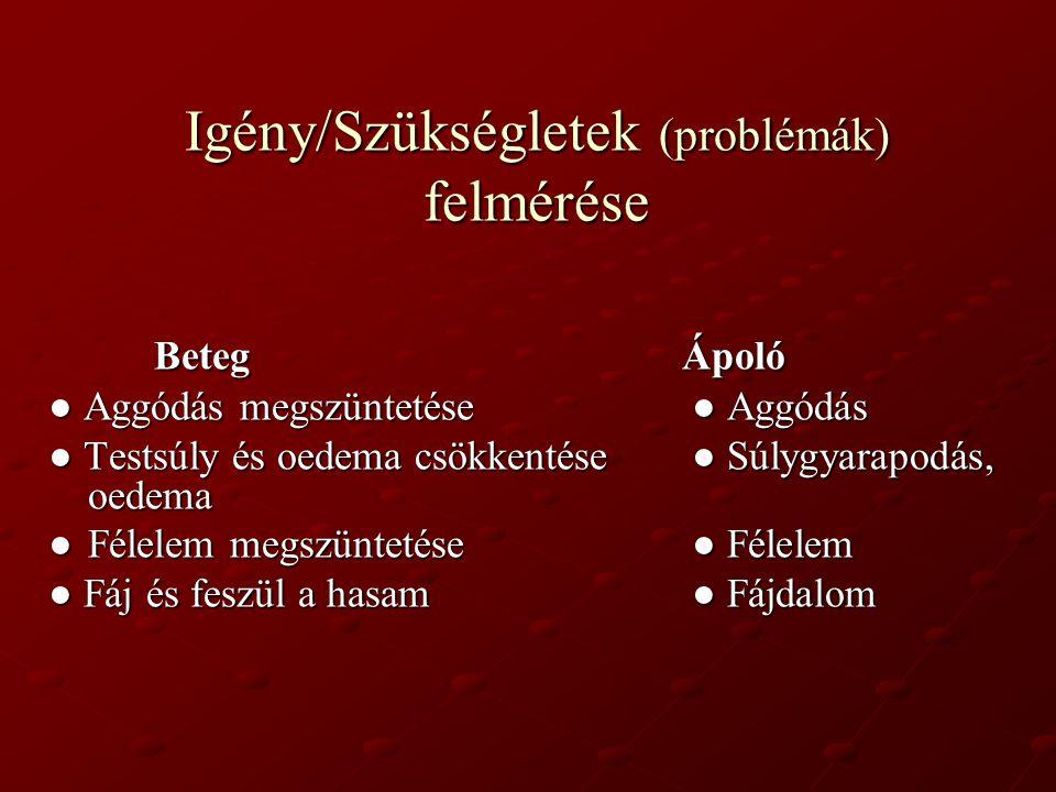 Igény/Szükségletek (problémák) felmérése