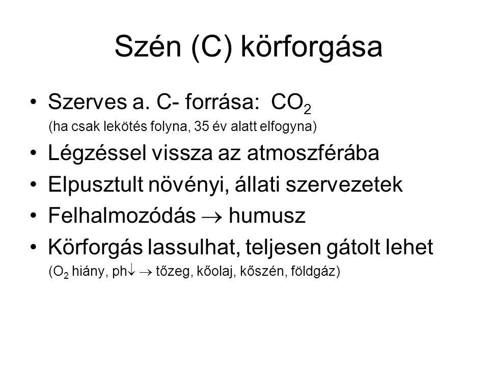 Szén (C) körforgása Szerves a. C- forrása: CO2