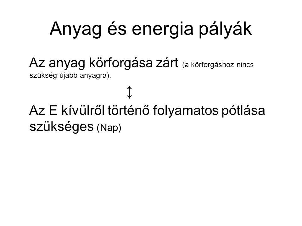 Anyag és energia pályák