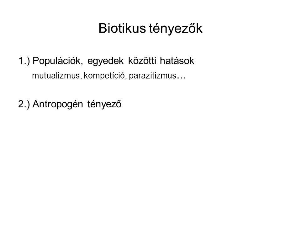 Biotikus tényezők 1.) Populációk, egyedek közötti hatások