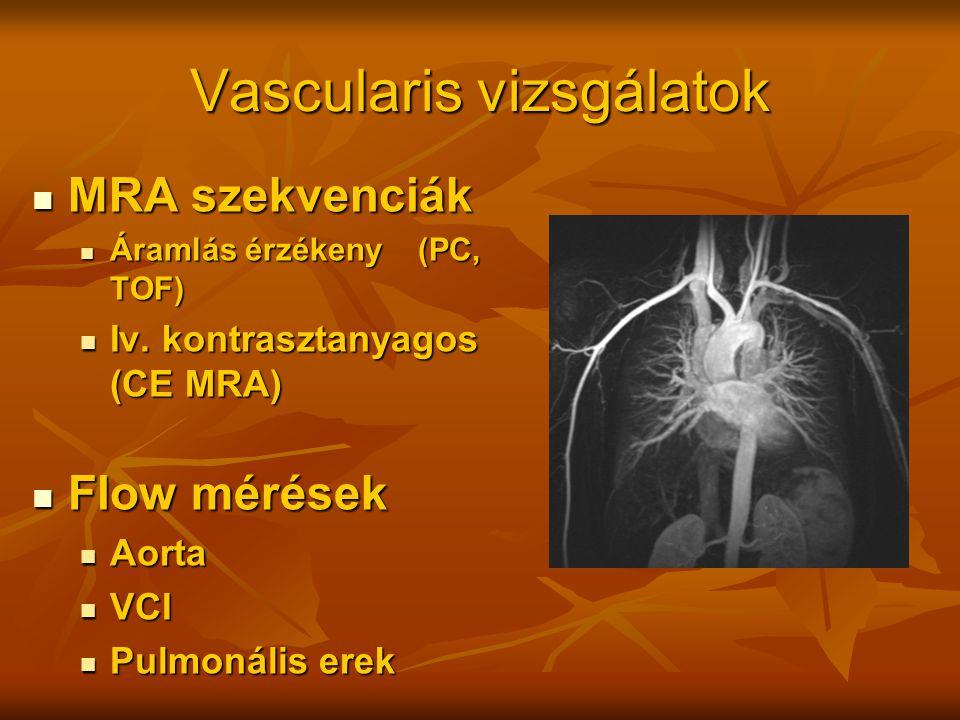 Vascularis vizsgálatok