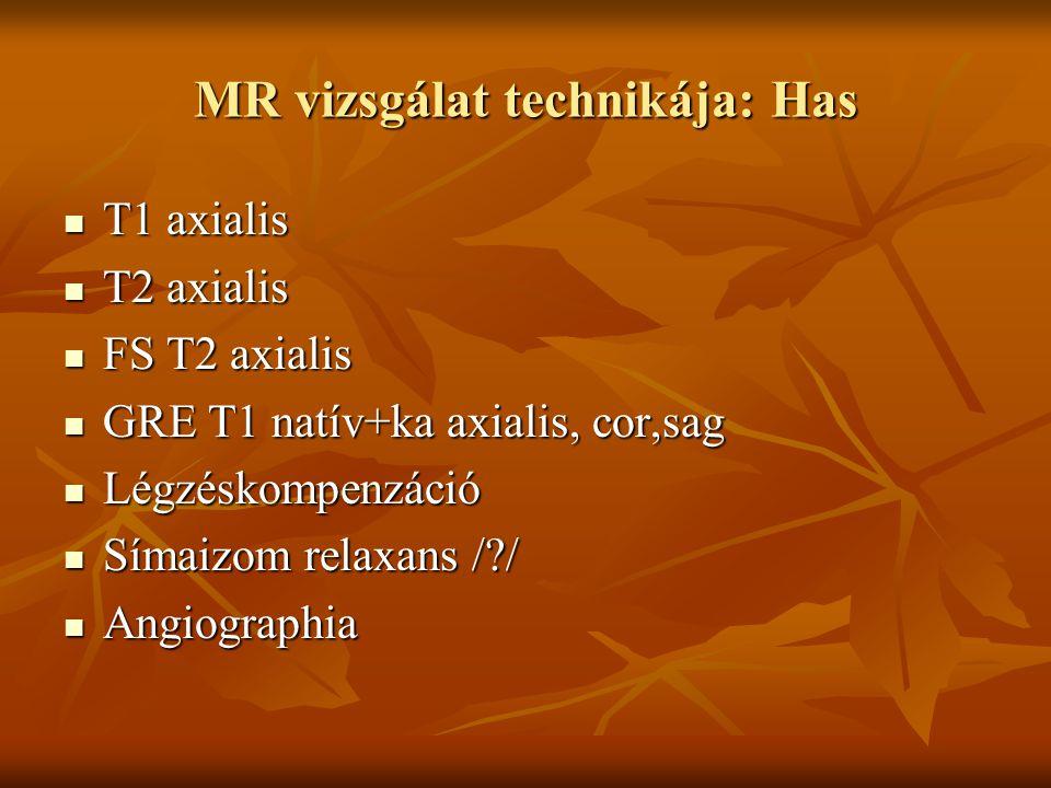 MR vizsgálat technikája: Has