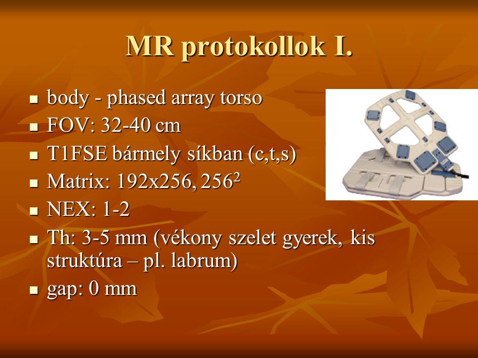 MR protokollok I. body - phased array torso FOV: 32-40 cm