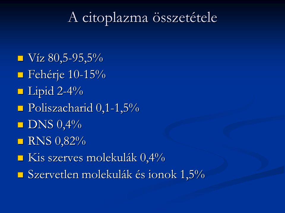 A citoplazma összetétele