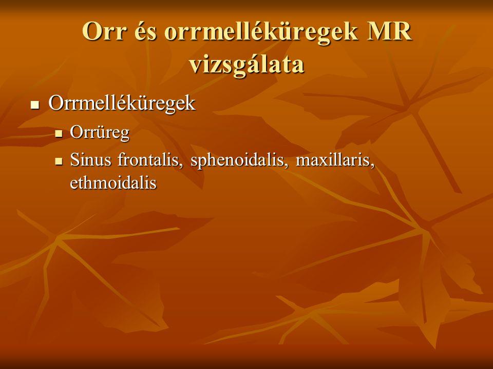 Orr és orrmelléküregek MR vizsgálata