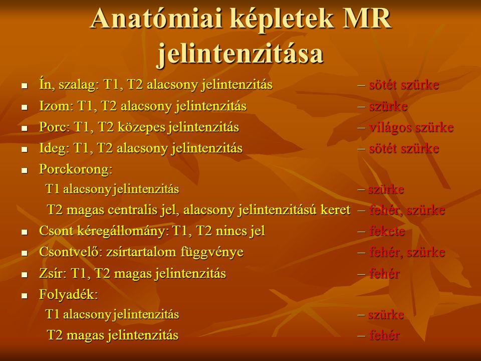 Anatómiai képletek MR jelintenzitása
