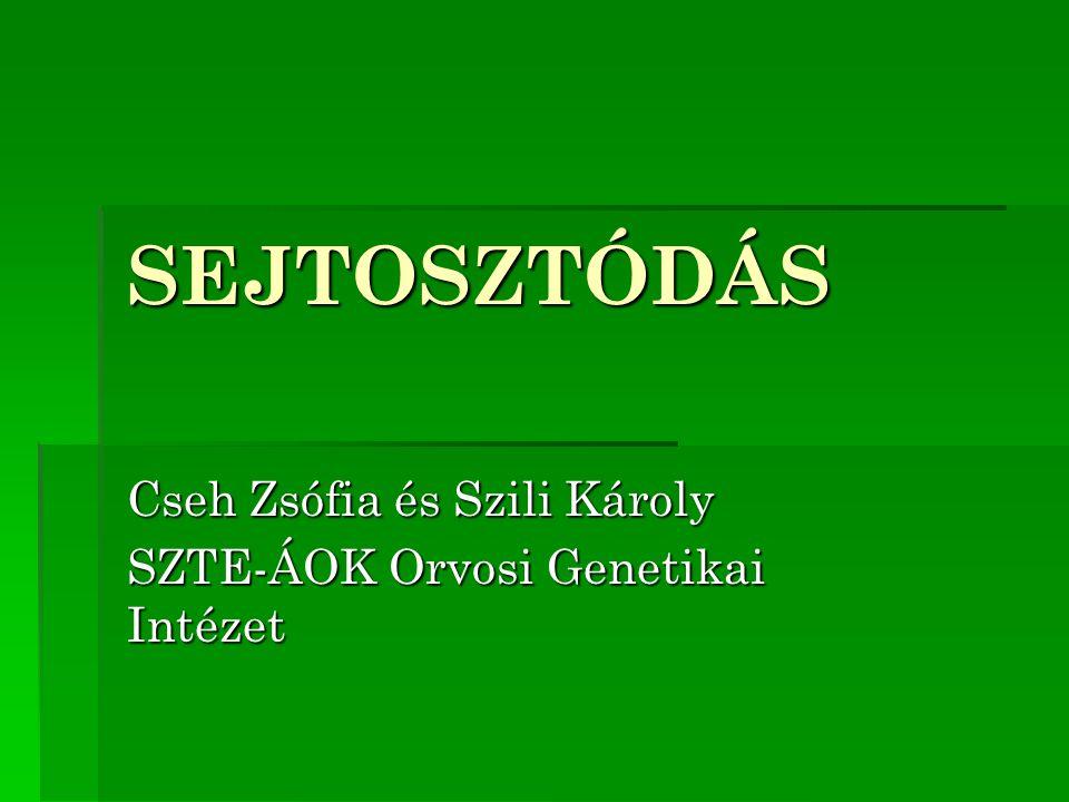 Cseh Zsófia és Szili Károly SZTE-ÁOK Orvosi Genetikai Intézet