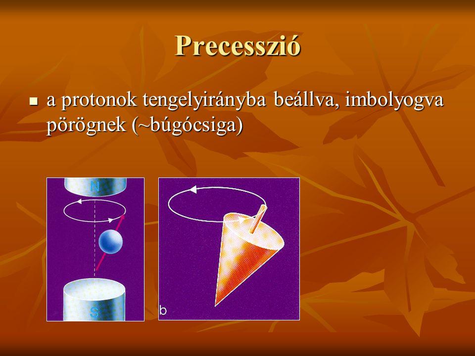 Precesszió a protonok tengelyirányba beállva, imbolyogva pörögnek (~búgócsiga)