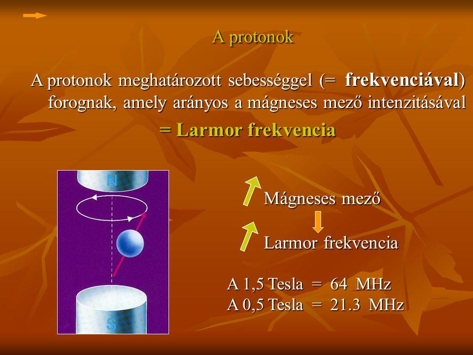 A protonok = Larmor frekvencia
