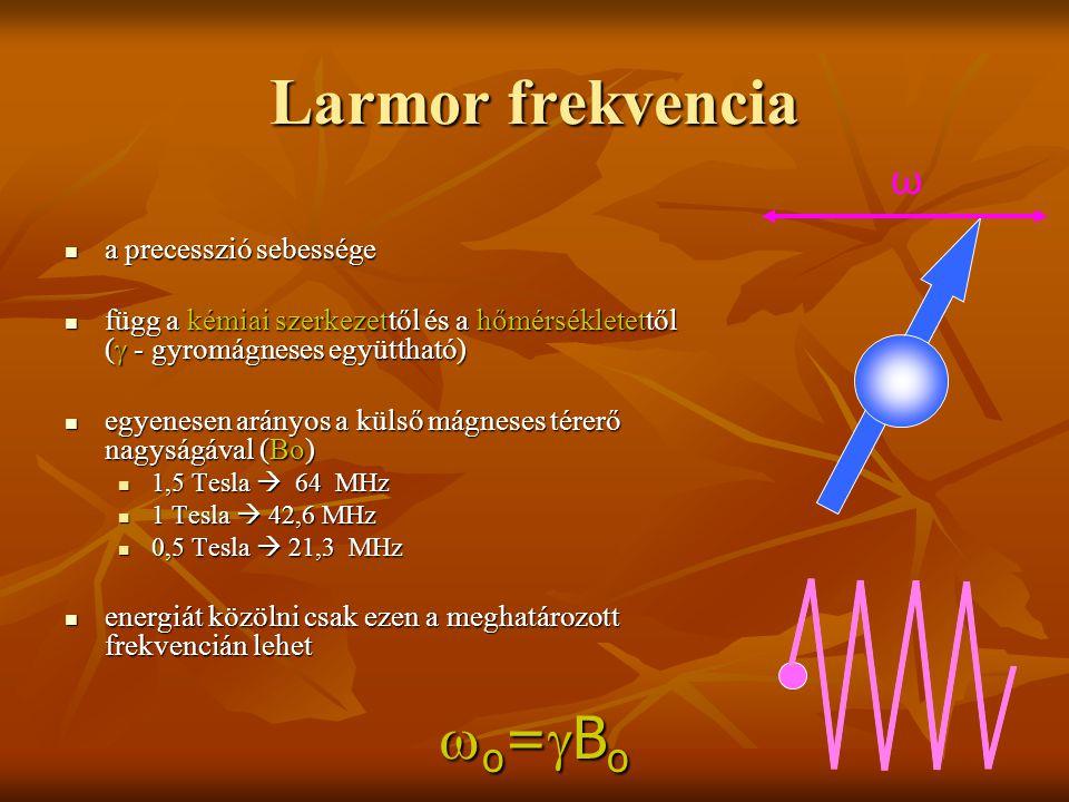 Larmor frekvencia o=Bo ω a precesszió sebessége