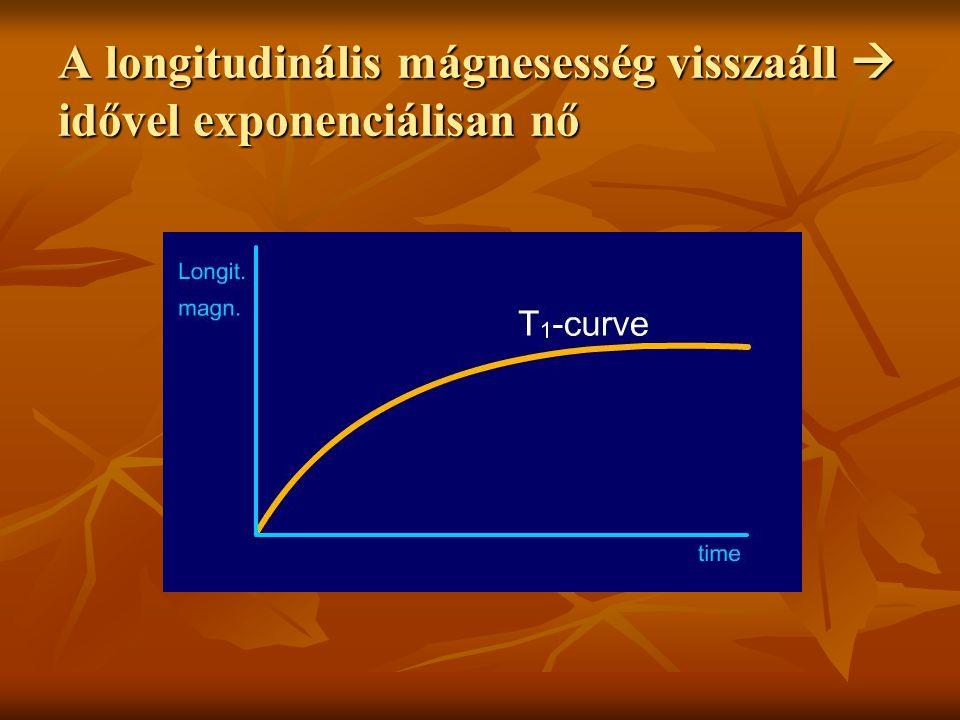 A longitudinális mágnesesség visszaáll  idővel exponenciálisan nő