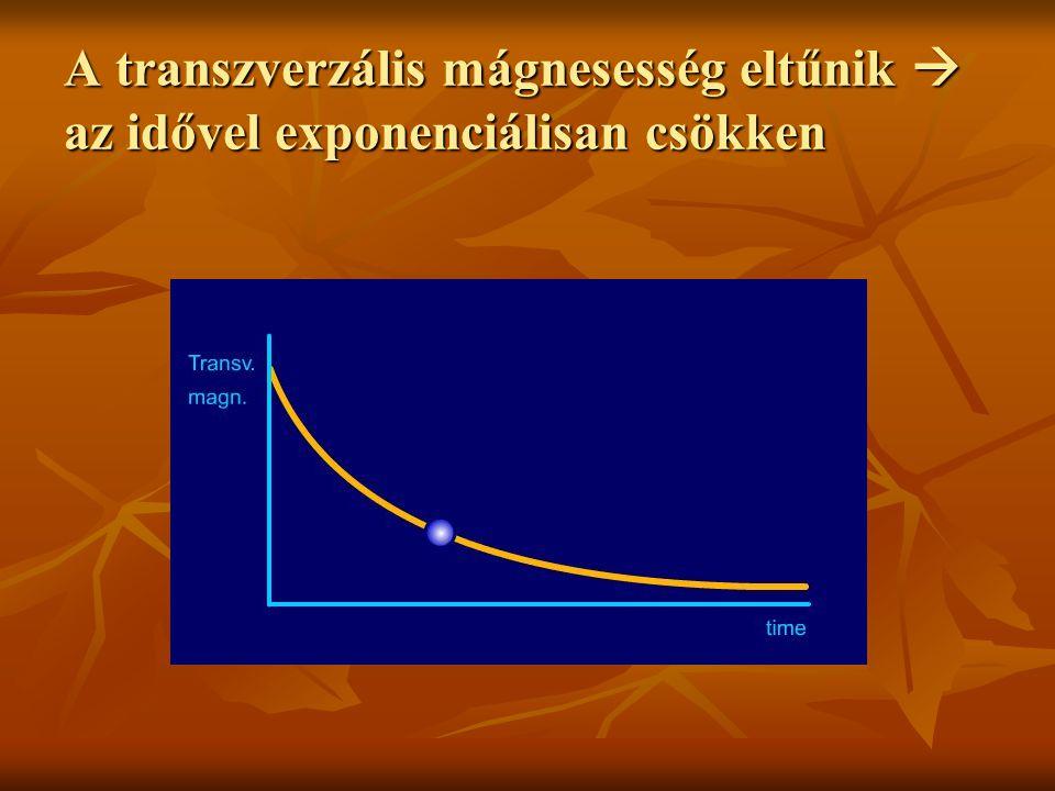 A transzverzális mágnesesség eltűnik  az idővel exponenciálisan csökken